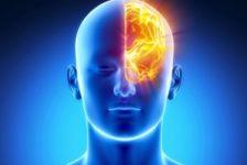 ARTIGO: Resistência cerebral à insulina e comportamento alimentar