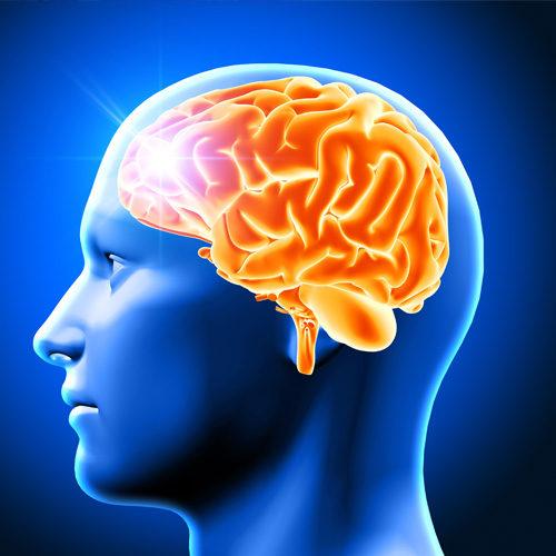 Resistência Cerebral à Insulina e Comportamento Alimentar