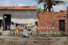 SBCBM alerta para consequências das novas estratégias de vendas de alimentos no Brasil